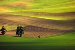 c2-Moravia